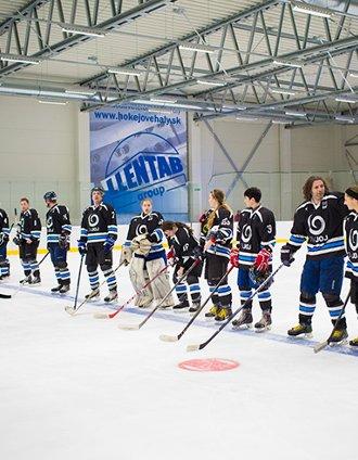 Projekt SK0158 - Hokejová KENEX arena
